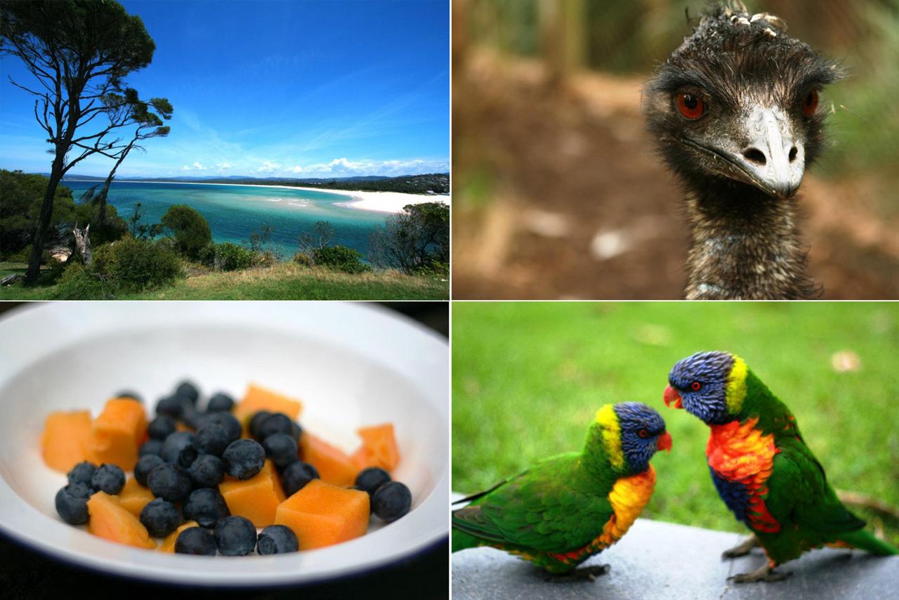 Wycieczka po Australii