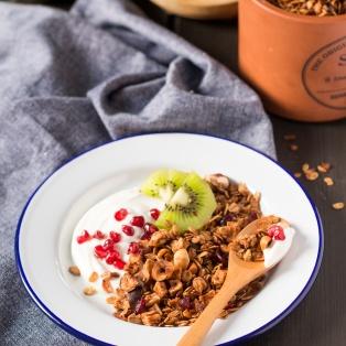 apple hazelnut and cranberry granola breakfast