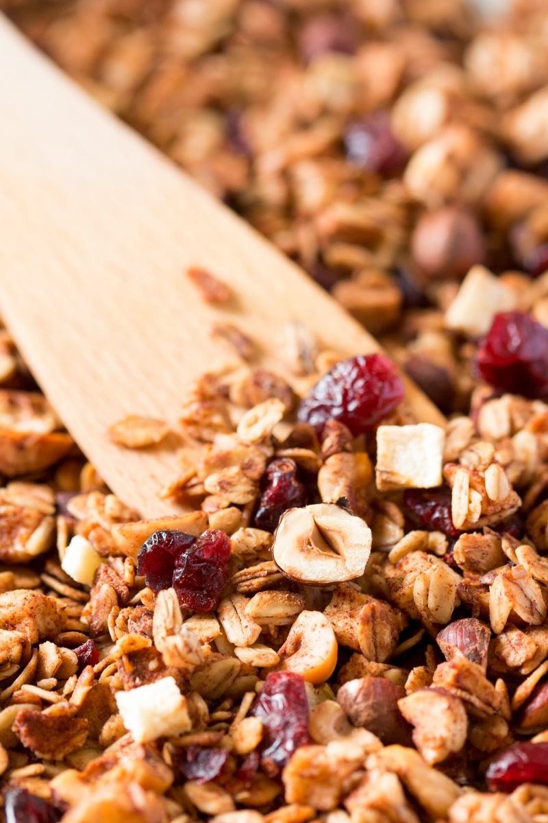 low fat apple granola close up