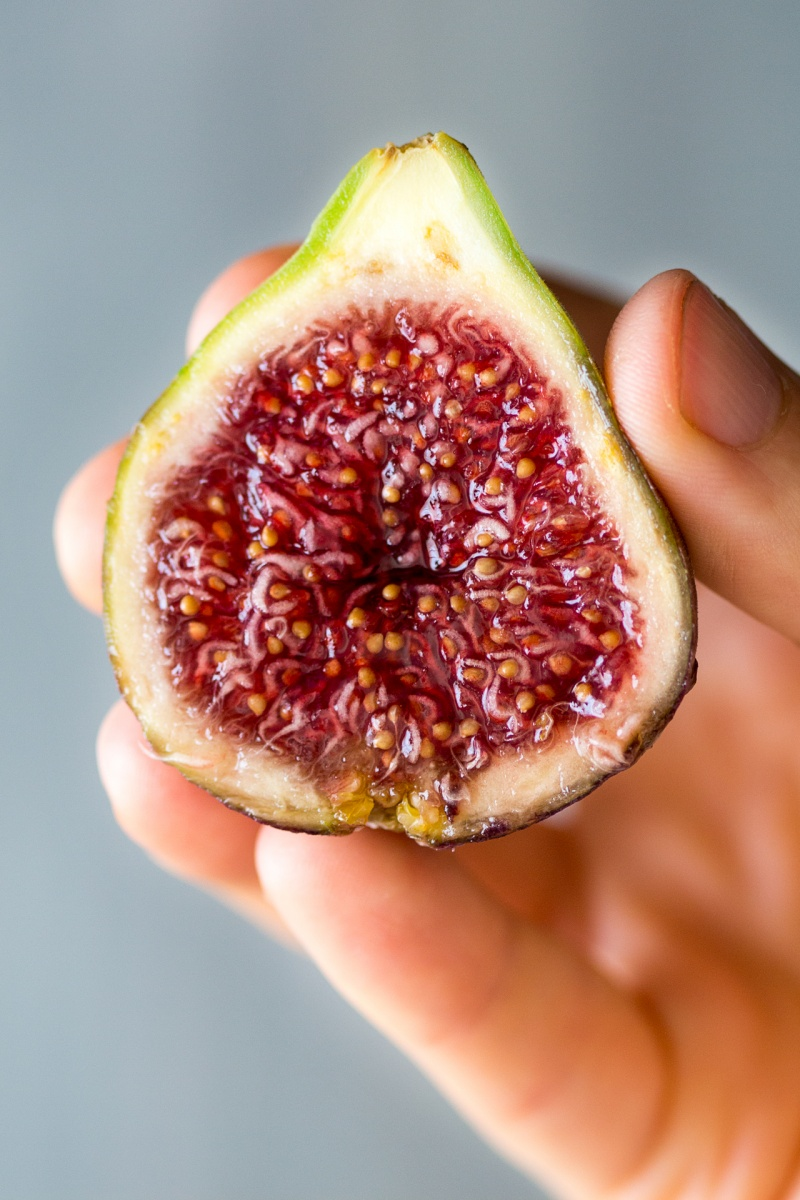 fig cross section for fig and rocket salad