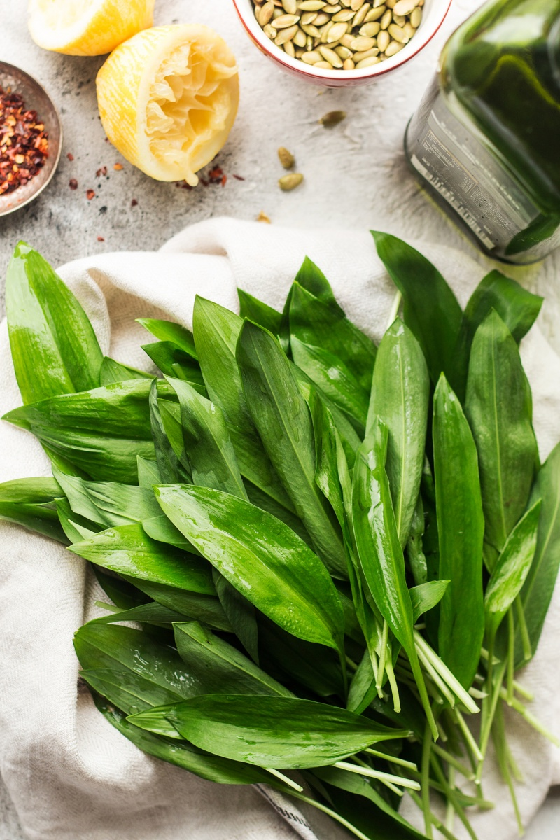 wild garlic bunch