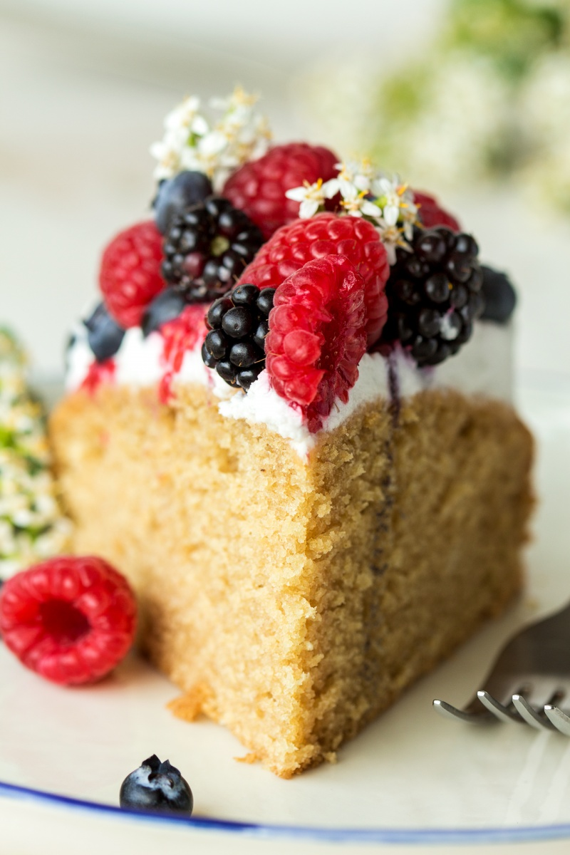 vegan sponge cream berries slice