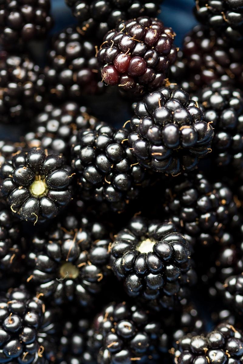 granola pots blackberries