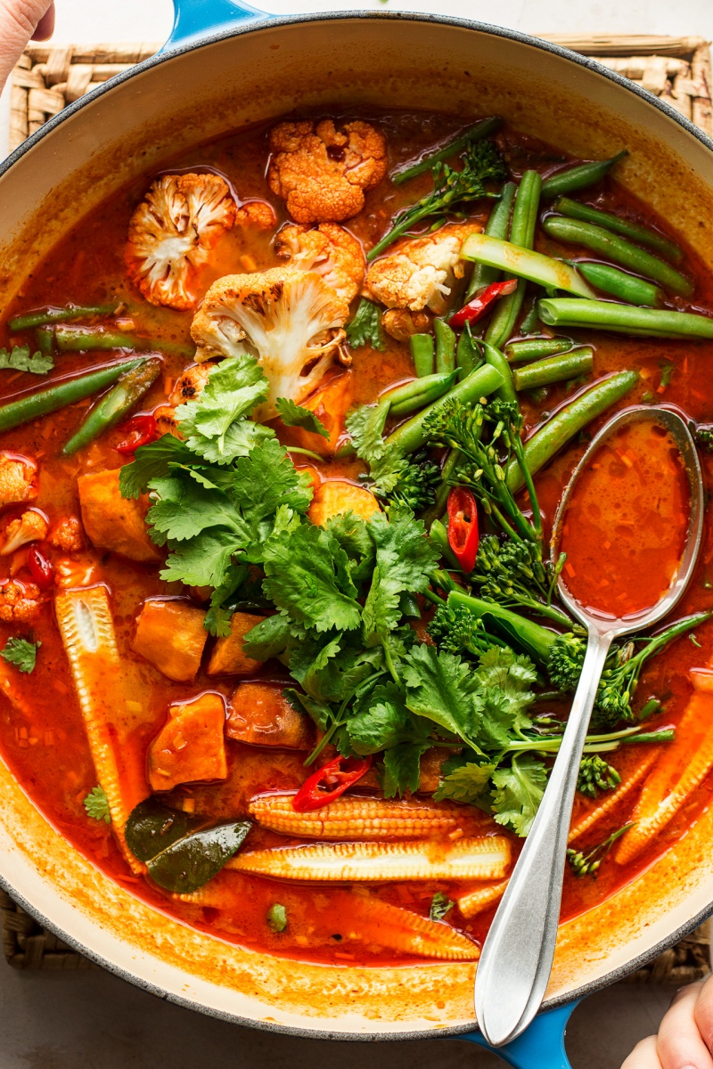 vegan thai red curry close