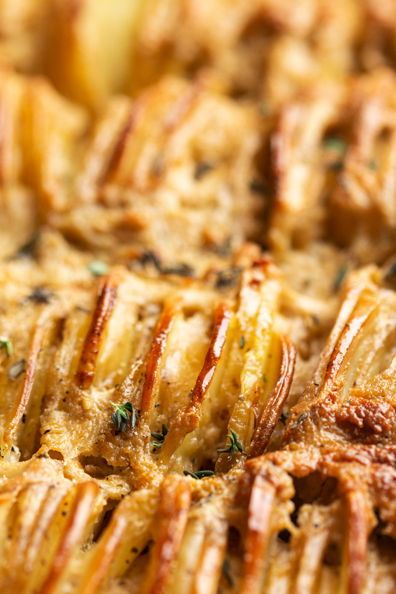 vegan potato gratin close up