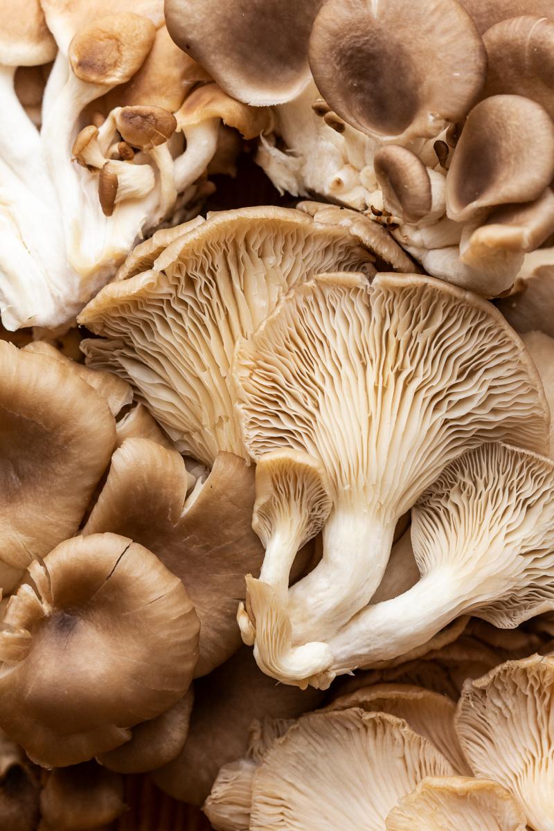 vegan fajitas mushrooms